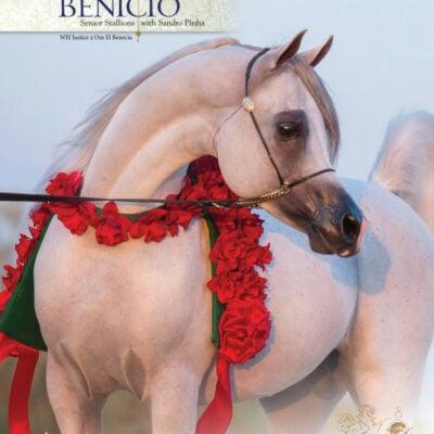 0920_OmEl_AHWorld_Benicio_1